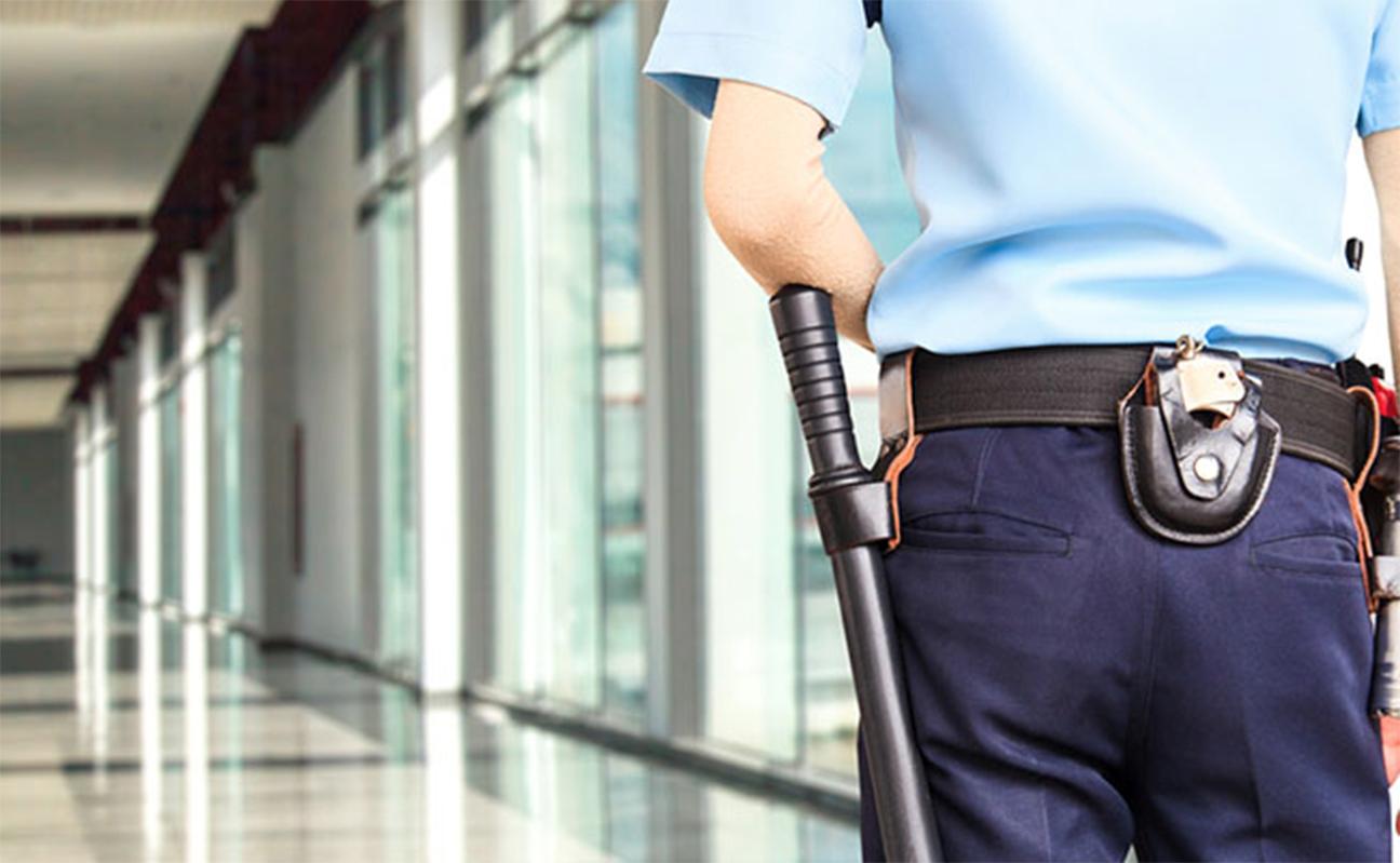 Vigilantes de Seguridad. PROMAN