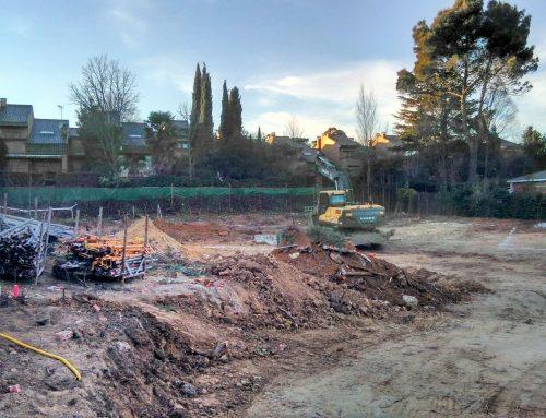 Una dudosa obra del Opus Dei empieza con la tala de 55 árboles de gran porte